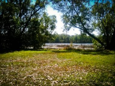 Alltag in Darwin