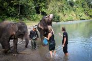 26_Sumatra_Indonesien_sterne_4_IMG_4764